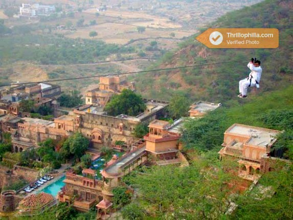 Neemrana_flying_fox_(4).jpg