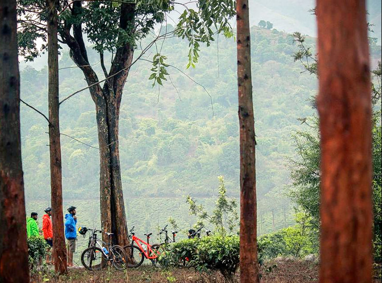 1476856687_cycling_in_wayanad_16.png