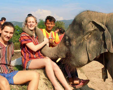 Elephant Jungle Sanctuary in Phuket - Flat 30% off
