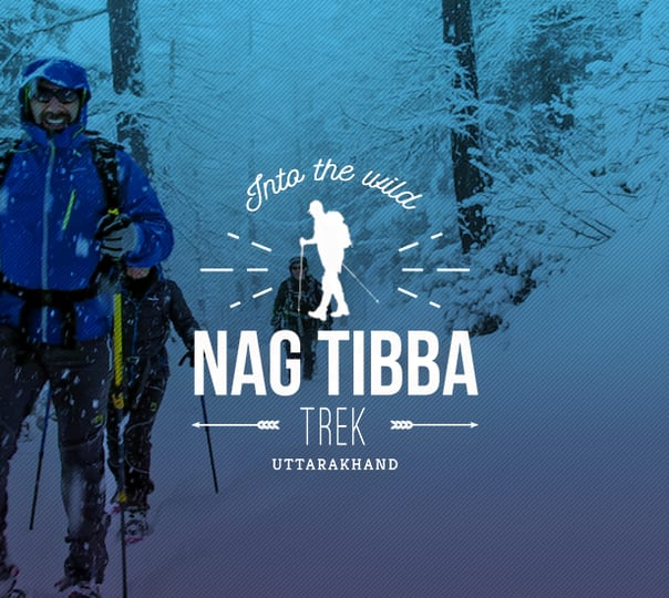 Nag Tibba: Trek through the Curvy Trails