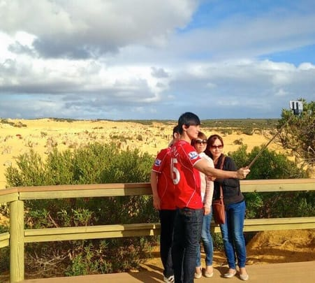 Pinnacles and Swan Valley Tour in Perth