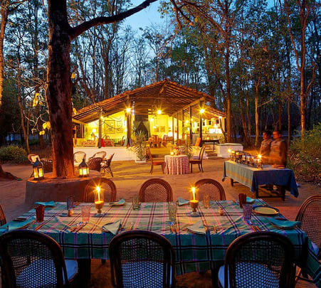 Wildlife and Camping in Kanha National Park