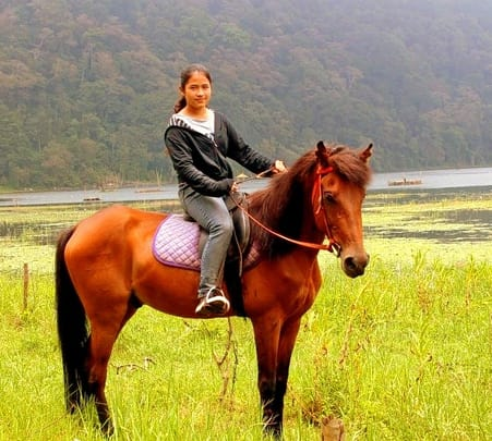 Rainforest Horse Riding in Munduk Langki at Bali