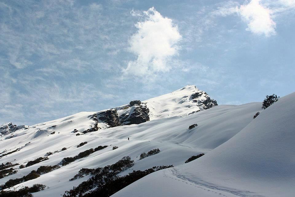 Chopta_trek.jpg