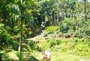 Chickmagalur-trekking_9519795029_o.jpg