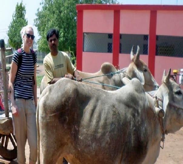 Alipura Tour in Madhya Pradesh