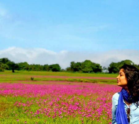 Explore Valley of Flowers at Kaas Plateau, Satara (from Mumbai) @ 1799 Only