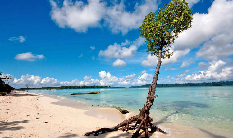 Image result for Havelock Island in Andamans