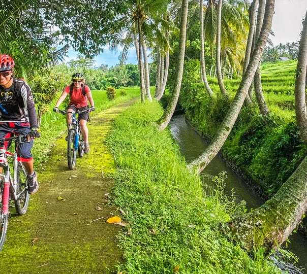6 Day/ 5 Night Cycling Tour of Bali