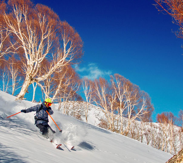Five Day Tour of Gulmarg with Skiing