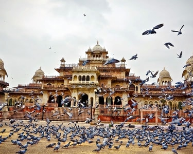 20 Places to Visit in Jaipur in One Day (With 3,500+ Reviews)