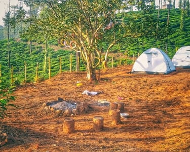 Camping Experience in Wayanad, Kerala - Flat 25% Off
