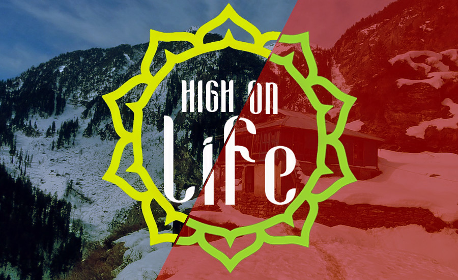 1500277298_high_on_life.png
