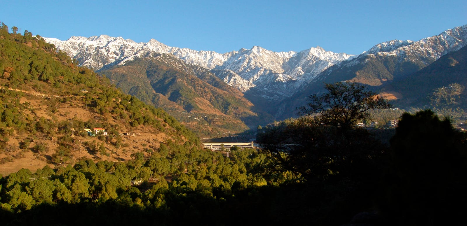 1492769737_a_view_of_palampur_himachal_pradesh_india.jpg