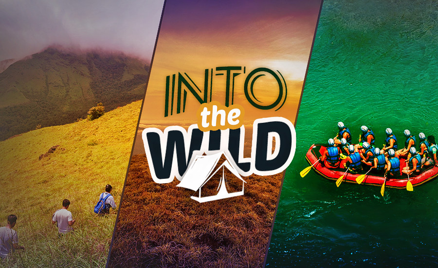 1499679680_into_the_wild_(1).png