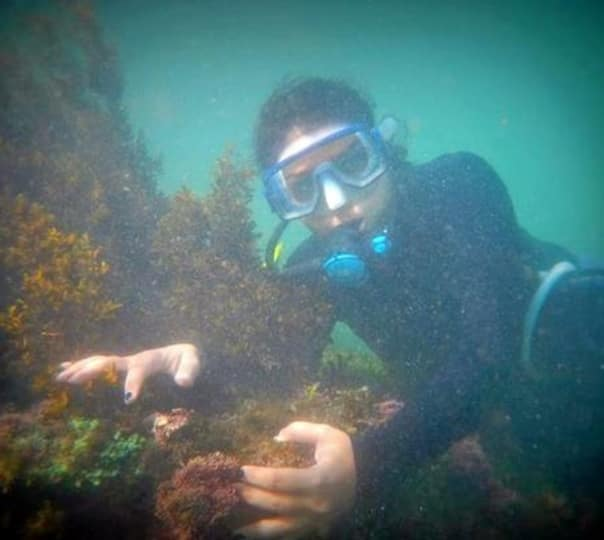 Stay and Scuba Diving in Tarkarli