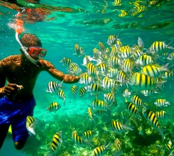 Island Trip With Snorkeling at Baina Beach, Vasco Da Gama, Goa