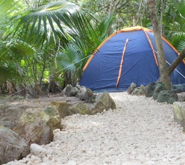 Jungle Camping in Goa