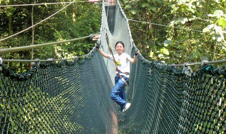 SkyTrex Adventure at Langkawi