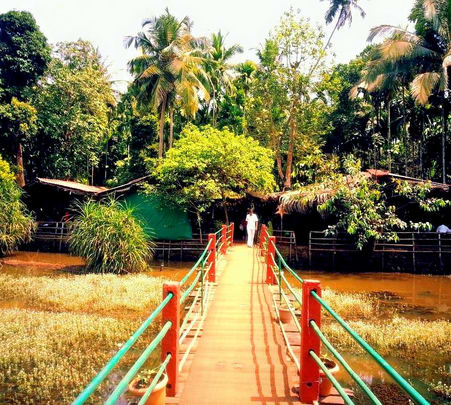 Spice Plantation and Old Goa Full Day Trip