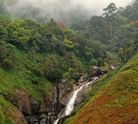 Kerala Tour Package For 5 Days-flat 32% off