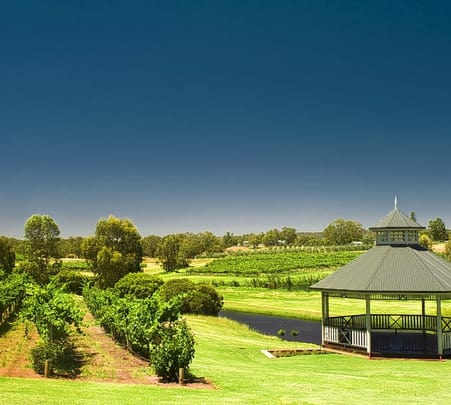 Half Day Swan Valley Tour in Perth