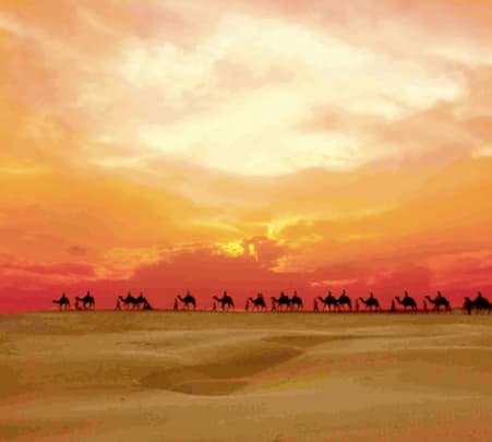 Jaisalmer Camping Tour with Camel Safari Flat 11% Off