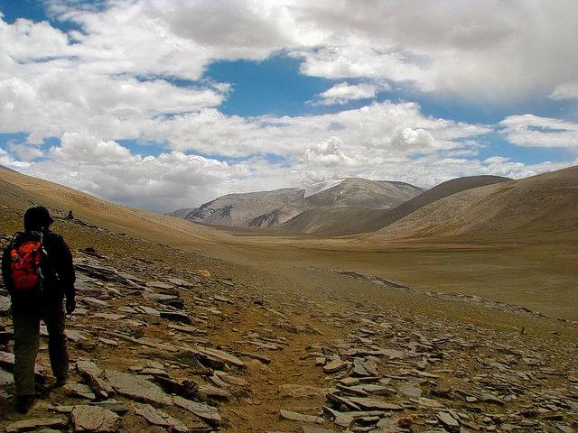 Lower_ladakh-_mcky_savage.jpg