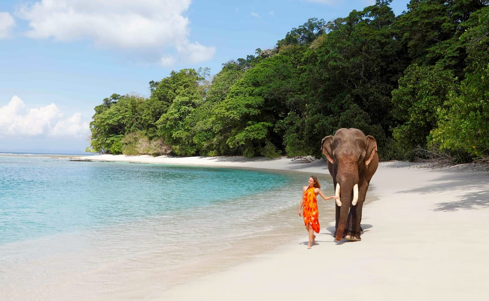 Monsoon Special 6 Days Magical Andaman Tour Thrillophilia