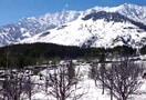 Solang_valley_rohtang_manali_052.jpg