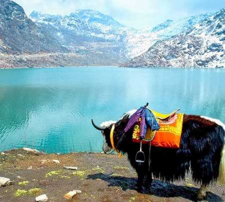 North Sikkim Tour: a Taste of the Hills