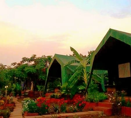 Stay Experience at Camp Temgarh in Maharashtra