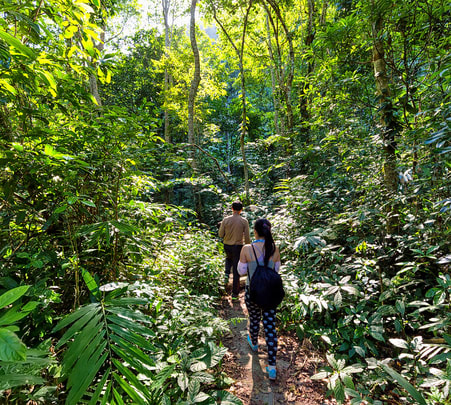 Border Hiking in Periyar Wildlife Sanctuary