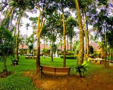Experiential Stay At The Village Resort Of Wayanad