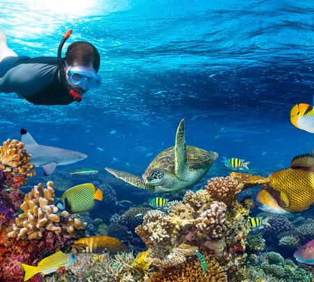 Snorkeling in Bali, Sanur - Flat 20% off