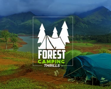 Forest Camping in Munnar, Flat 35% off