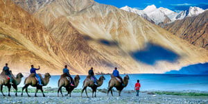 1519842313_ladakh-photo-tour-2.jpg