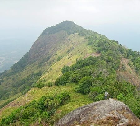 Trek to Kirigalpoththa Mountain Peak