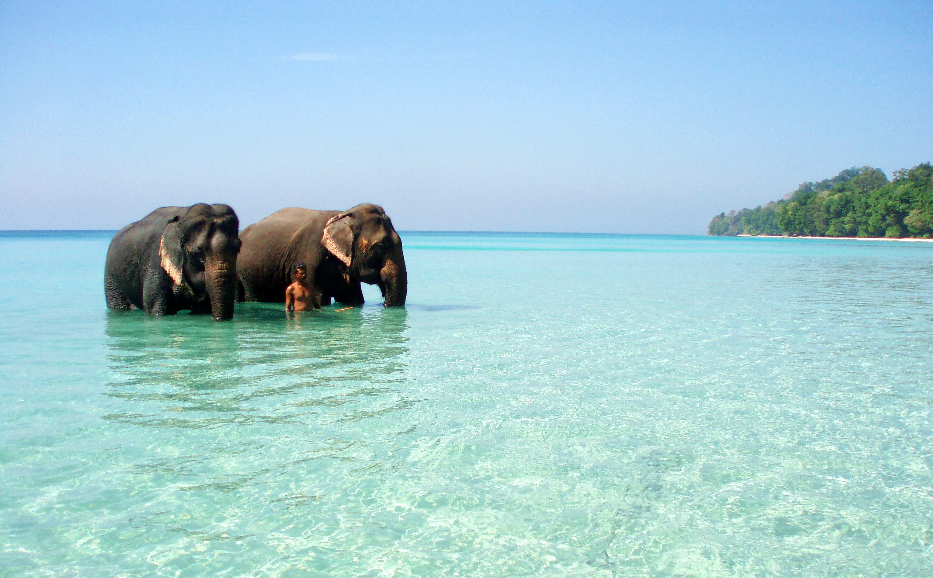 1488289026_andaman.and.nicobar.islands.original.11469.jpg