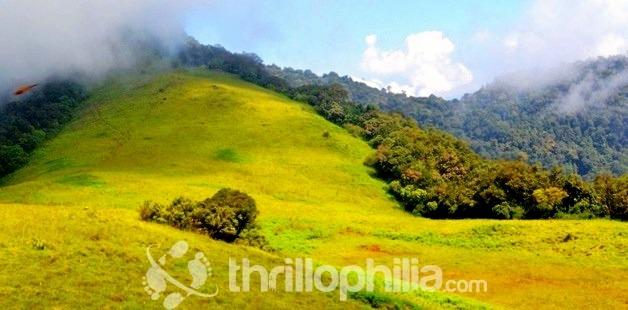 Beautiful_of_munnar_hills_kerala.jpg