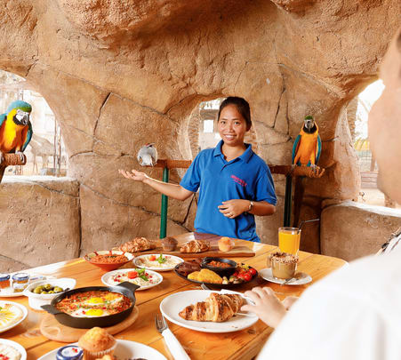 Breakfast with Parrots in Abu Dhabi Flat 15% off
