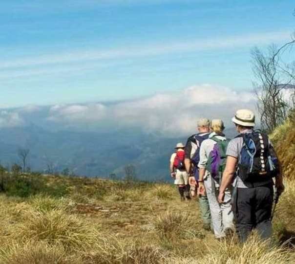 Trek To Chokramudi In Munnar