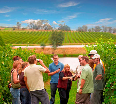 Day Tour to Yarra Valley Wineries