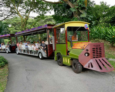 Jurong Bird Park Tickets with Transfer - Flat 20% off