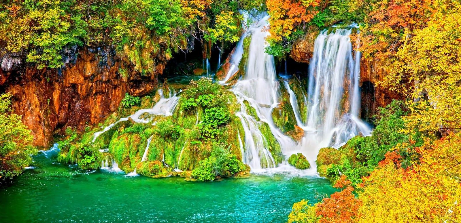 25 best wayanad tourist places places to visit in wayanad