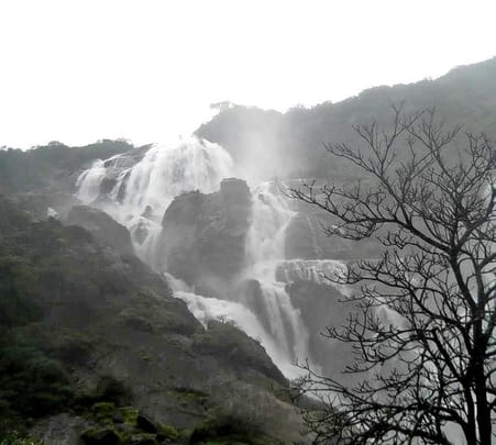 Dudhsagar Waterfalls Trek