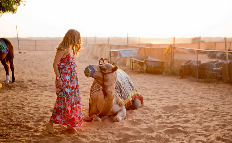 Desert Safari With Dhow Cruise And Dubai City Tour Thrillophilia