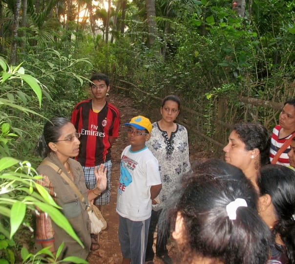 Nature Trail to Tansa Wildlife Sanctuary in Thane