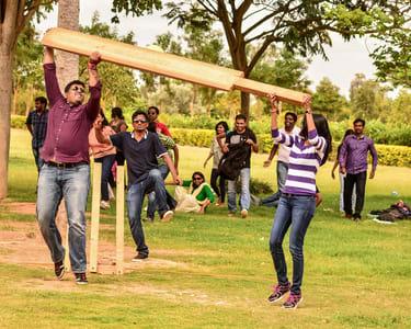 Jumbo Cricket