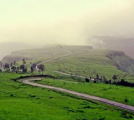 Trek to Kaas Plateau, Satara